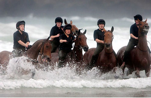 Horses from the King's Troop Royal Artillery are exercised in the sea on Polzeath Beach, Polzeath, Cornwall
