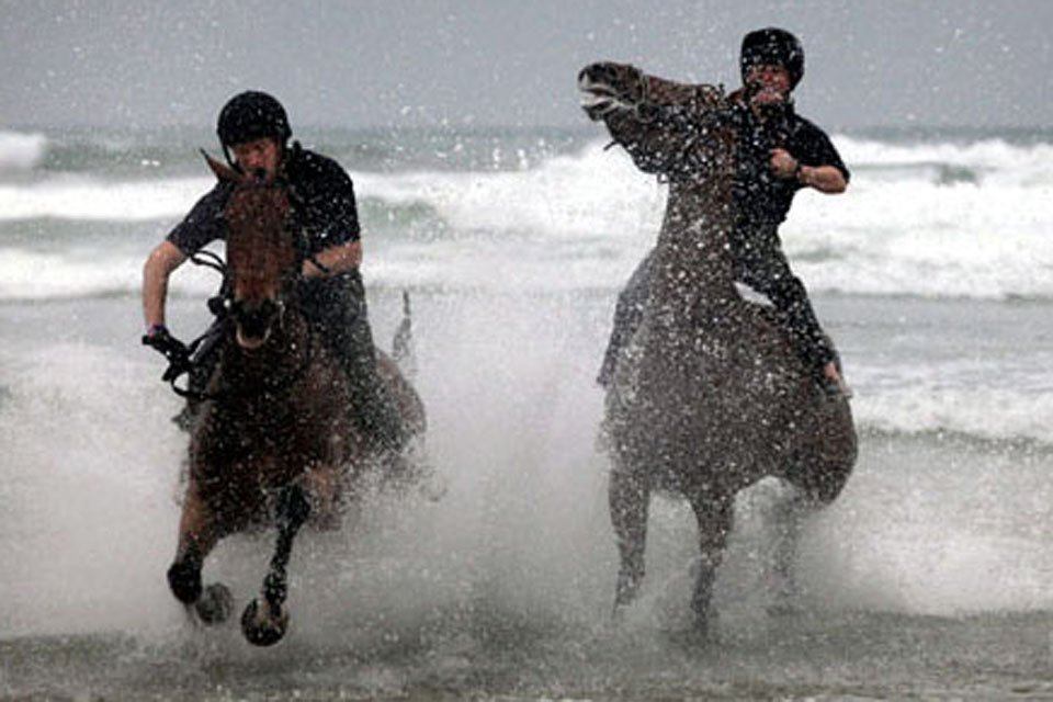 Horses from the King's Troop Royal Artillery are exercised in the sea on Polzeath Beach, Polzeath, Cornwall [Picture: Copyright/SWNS Group 2011]