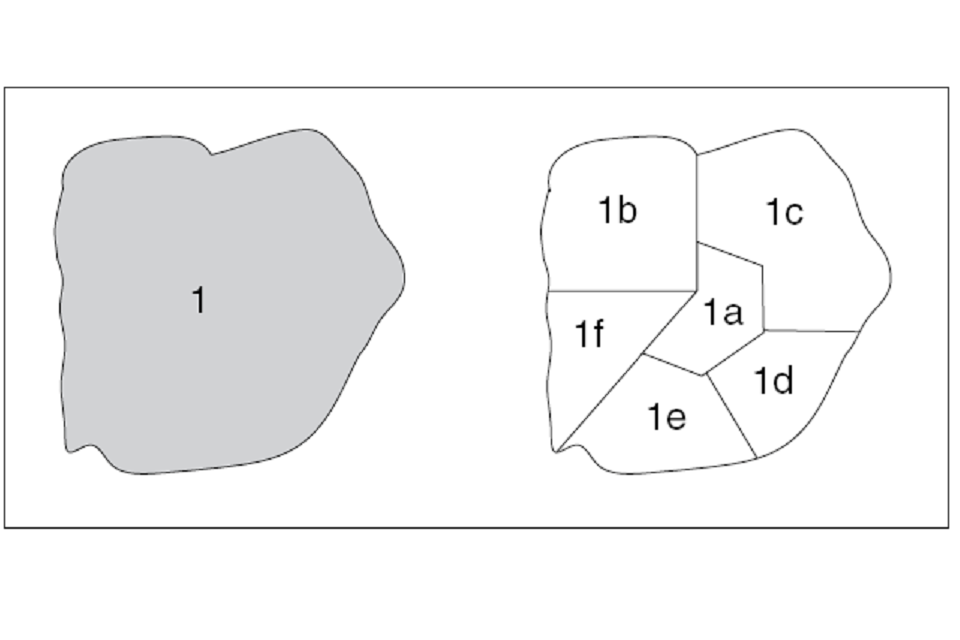 Examples of compartments and subcompartments