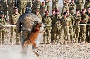 Spectators watch as Lieutenant Colonel Jez Hair is bitten by patrol dog Rex as part of the 'Bite the Boss' fundraising event for Macmillan Cancer Support