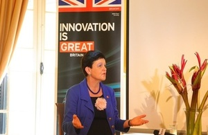 Baroness Lucy Neville-Rolfe Parliamentary Under Secretary of State & Minister for Intellectual Property, will visit Vietnam