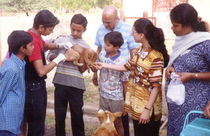 Dog vaccination in India, courtesy of rabiesalliance.org