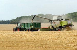 Farmers harvesting cereals