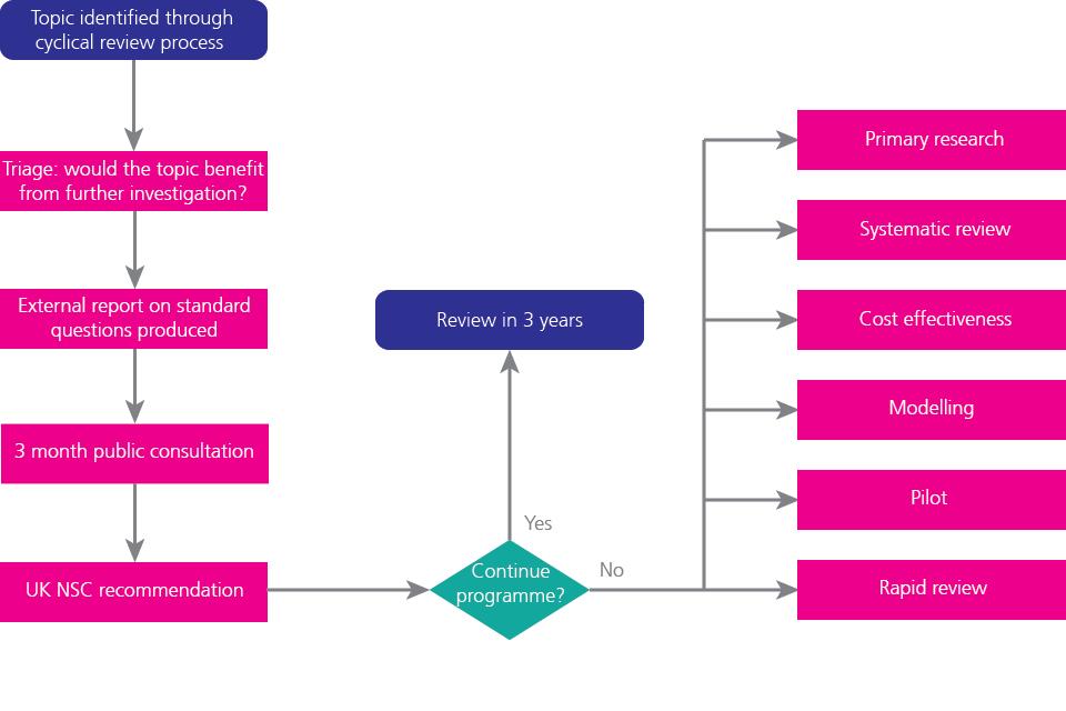 Existing programme flowchart