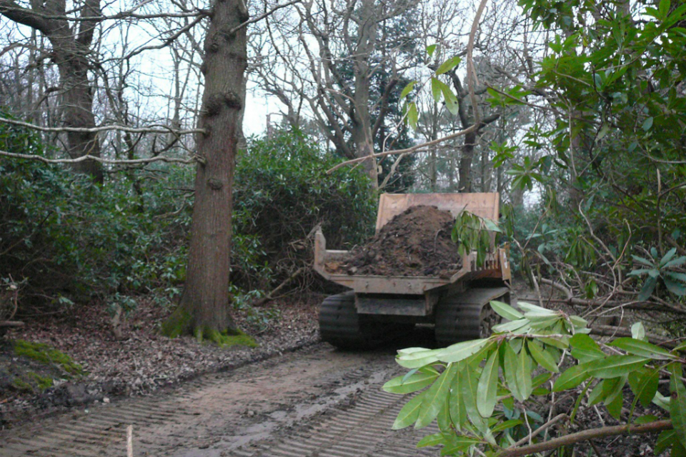 woodland relocation