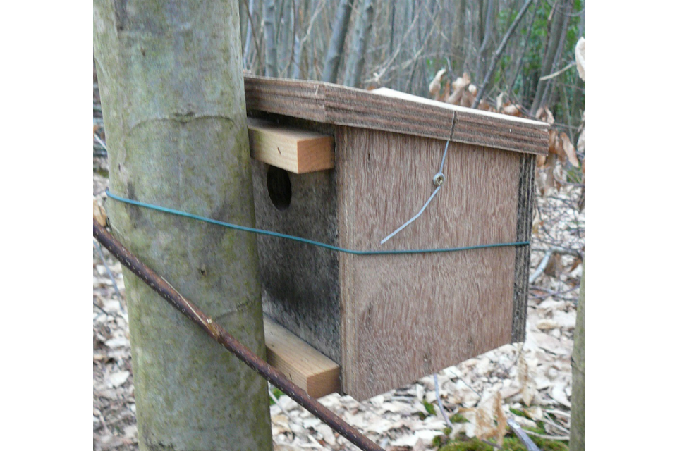 Box to protect dormice