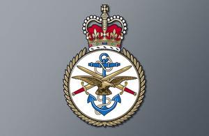 RAF Tornado incident