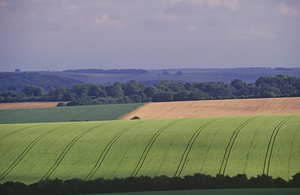 Upland farm - East Allendale (Copyright Natural England/James LePage)