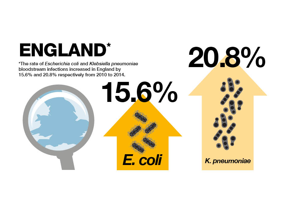 Infographic explaining the increased rate of bloodstream infections from 2010 to 2014.