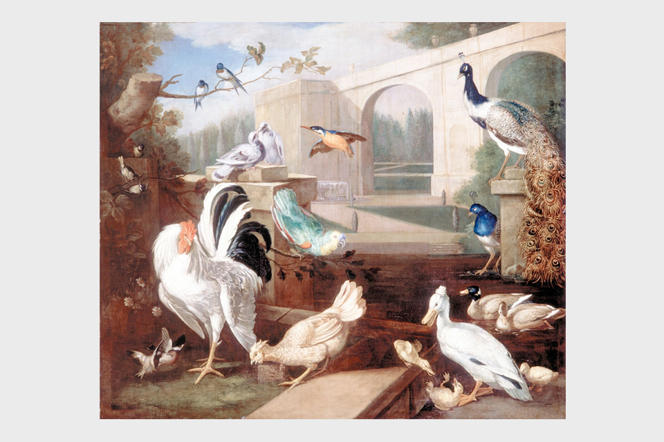 Various types of Birds with Viaduct