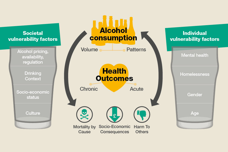 Alcohol consumption and health outcomes