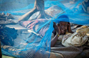 Child under a malaria net