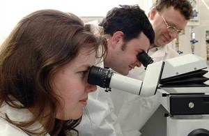 Scientists using microscopes