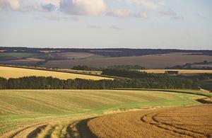 Mere - 'prairie' monoculture field landscape