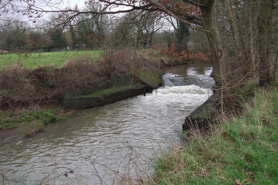 River Teise before Harper's Weir near Goudhurst has been removed.