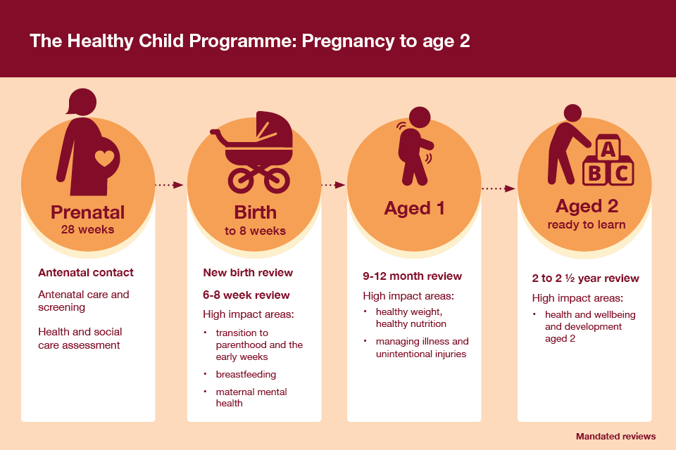 Infographic showing the elements of the Health Child Programme from pregnancy to age 2.