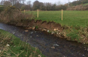 Black Beck bank restoration