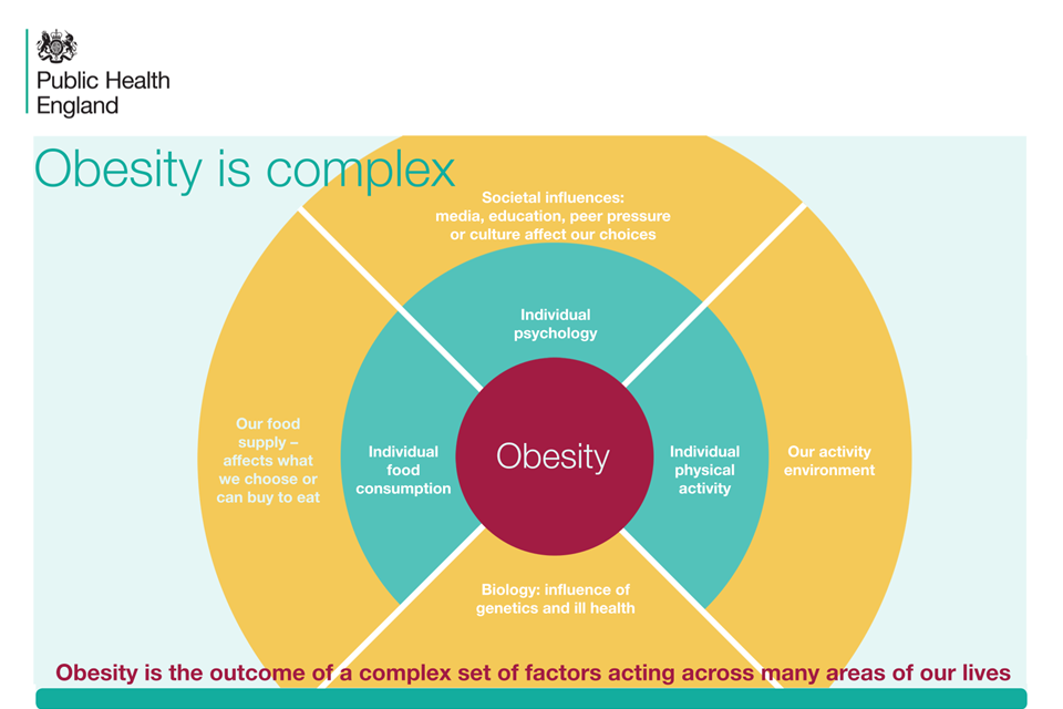 an analysis of obesity in todays society This new analysis is based on data from the national health and nutrition examination survey, which is considered the gold standard for evaluating the obesity epidemic in the usa, because it is an.