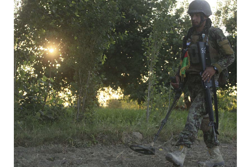 An Afghan warrior sweeps for explosive devices during Operation BIG FISH