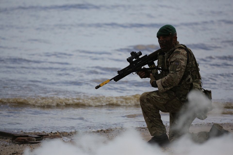 The Royal Marines amphibious display in action