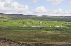 Image of Teesdale -Natural England (Allan Drewitt)