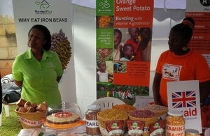 HarvestPlus raising awareness of their biofortified sweet potato, beans and maize at a DFID Uganda exhibition. Picture: HarvestPlus
