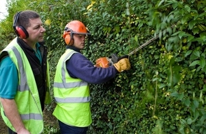 Learners trimming a hedge