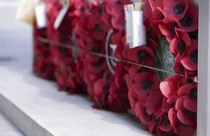 Rememberance Day photo