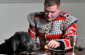 Drummer David Steed and the Irish Guards' new mascot, Domhnall [Picture: Corporal Steve Blake, Crown Copyright/MOD 2012]