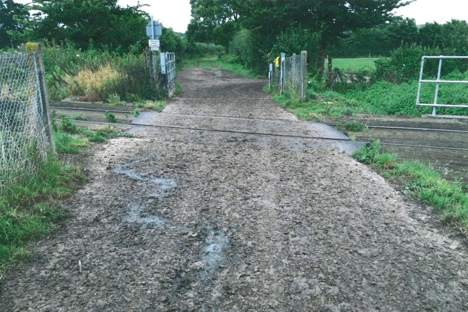 Thorney Marsh Lane level crossing (photo courtesy of Network Rail)