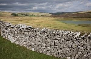 Limestone dry stone wall, Orton Fells, Cumbria