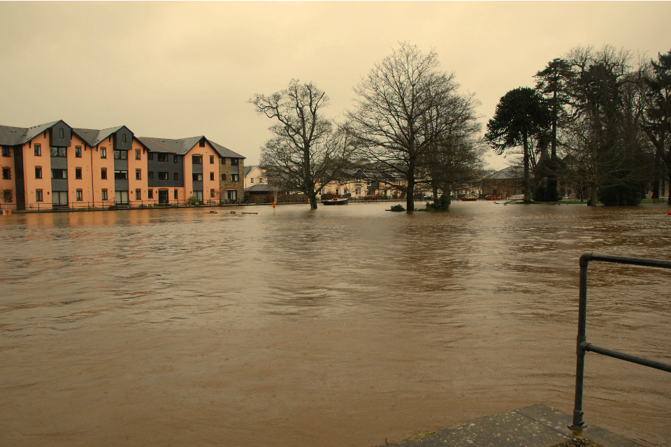 River Dart, Totnes, Devon