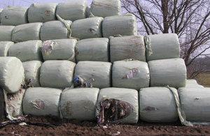 Piles of hay bales