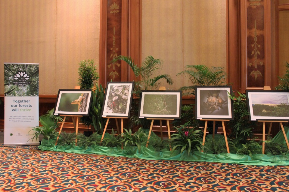 A selection of photographs of Brunei's dedications to the QCC