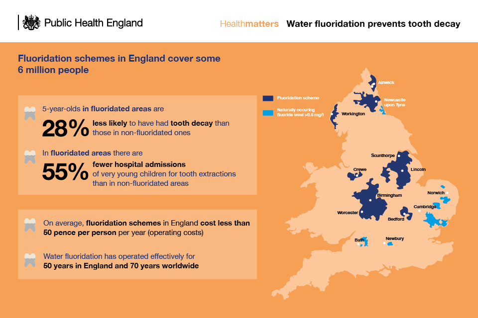 Infographic describing how water fluoridation can prevent tooth decay