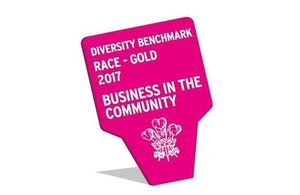 Business in the Community Diversity Benchmark: Race gold award. All rights reserved