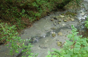 Pollution in a watercourse