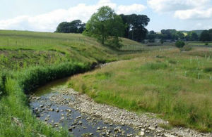 Image of an example of natural flood management - a meandering stream and a meadow with saplings planted