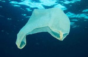 S300 plastic bag in ocean