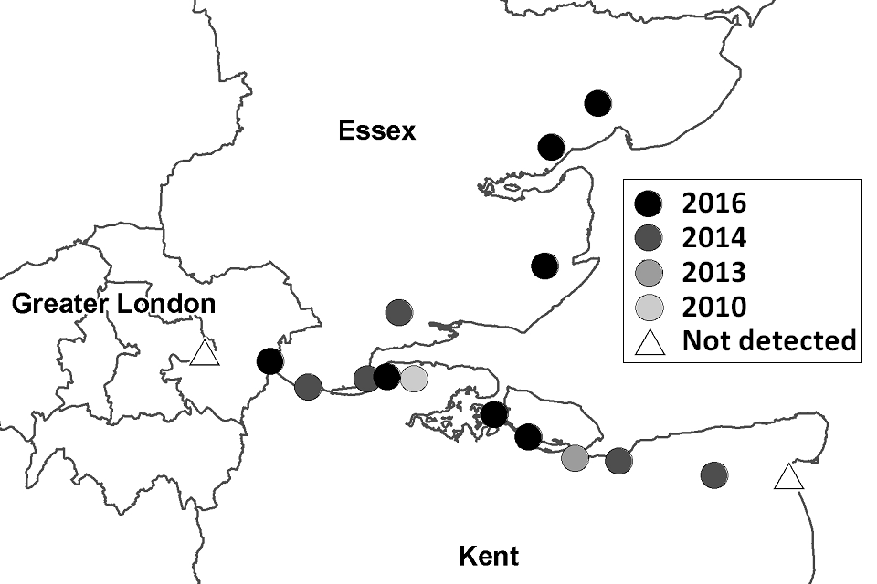 Map showing known locations of Culex modestus mosquitoes in south-east England