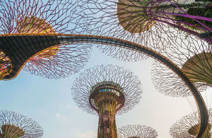 Supertrees at Gardens by the Bay in Singapore