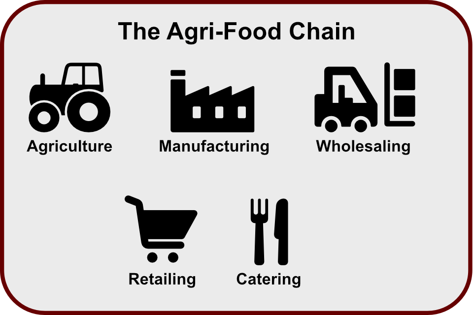 The Agri-food chain
