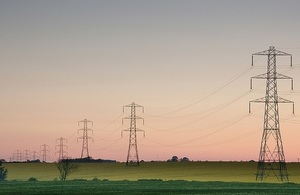 Electricity pylons by Ian Britton