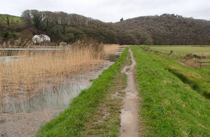 Picture of the River Tamar level with the top of an embankment next to a green field