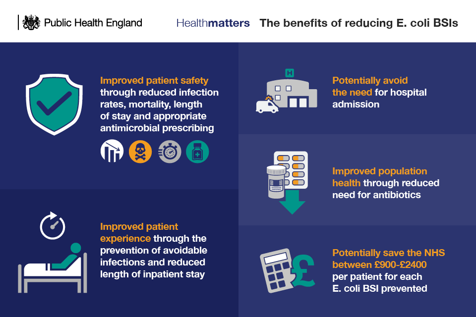 Infographic showing the benefits of reducing E. coli bloodstream infections
