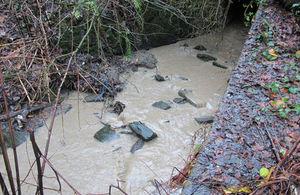 Muddy watercourse