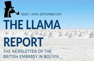 The Llama Report
