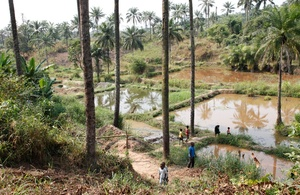 Community fish-farming ponds in the DRC.