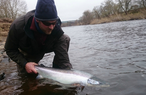 Salmon and sea trout catch return