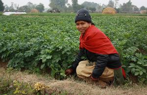 Santa Rani Chaudhari pictured near her vegetable plot. Picture: Robert Stansfield/DFID